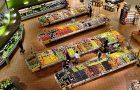 Gdzie Auchan zastąpił Real? Sklepy Auchan w Polsce