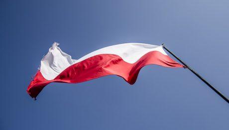 Pola – nowy znak towarowy wyróżni polskie produkty