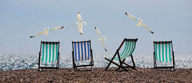 mewy i leżaki na plaży