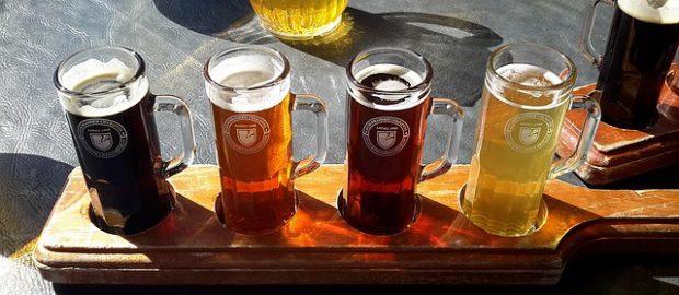 Degustacja piwa