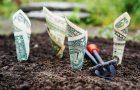 Jak sprawdzić długi męża, rodzica, spadkodawcy? Jak nie płacić cudzych długów?