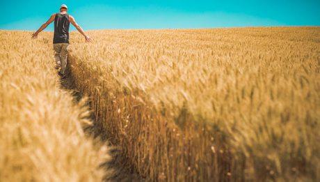 Kredyt dla rolnika – jak uzyskać kredyt hipoteczny, mieszkaniowy prowadząc gospodarstwo rolne?