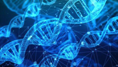 Na czym polega oraz ile kosztuje badanie DNA?
