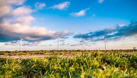 Energia ekologiczna – gdzie produkuje się najwięcej energii odnawialnej?