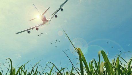 Jak wynająć samolot? Ile kosztuje czarter samolotu?