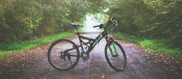 Rower stojący na drodze w lesie