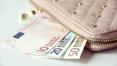 portfel z euro