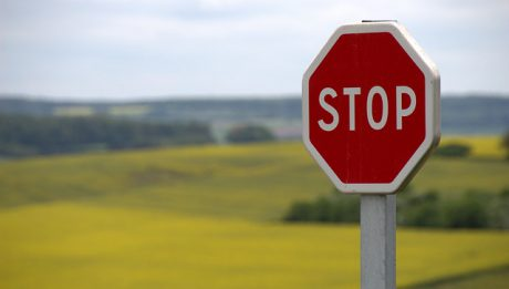 Znak STOP na drodze