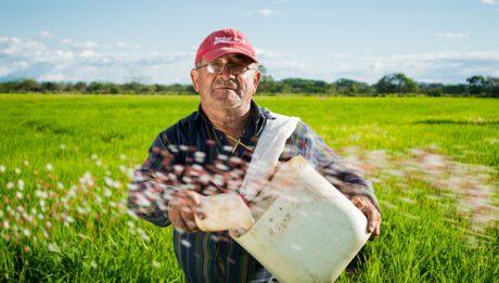 Polska coraz bliżej zniesienia wiz do USA, pomoc suszowa dla rolników… – przegląd 13 sierpnia 2019