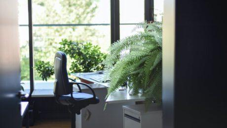 Ile kosztuje dobry fotel ergonomiczny? Za jakie funkcje fotela ergonomicznego warto zapłacić więcej?