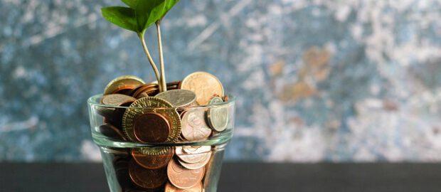 Roślina wyrastające z monet